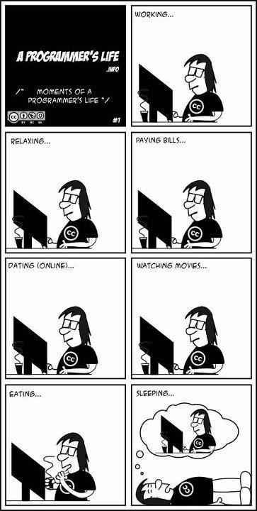 This cartoon strip. | 27 Things Only Developers Will Find Funny