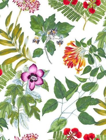 Where a piece of a vibrant nature goes on the wall...PIERRE FREY MIAMI WALLPAPER , ÉTÉ