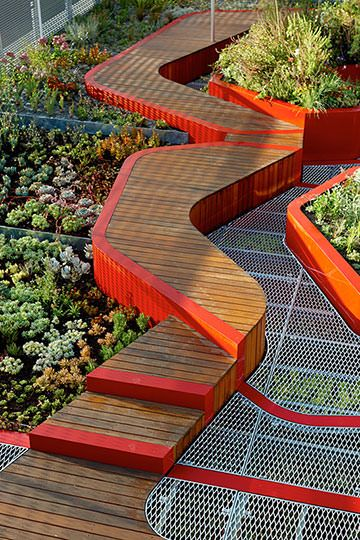 HASSELL | Project - Burnley Living Roofs