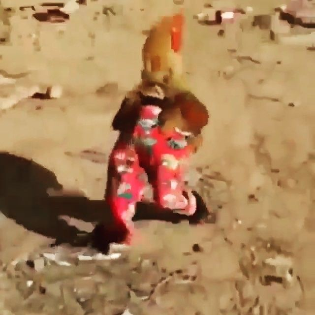 A chicken wearing pants... You're welcome! 😂 #happyfriday comes a day early…