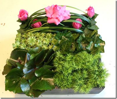95 Best Images About Wedding Greenery - Galax Leaves On Pinterest