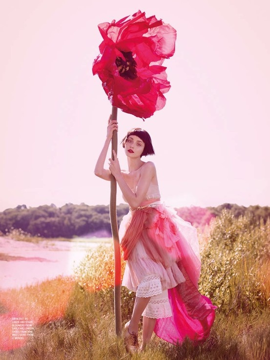 競わない 花のように 明るい色を撒き散らしながら 踏まれて 濡らされて それでも 風に踊る 踊り続ける