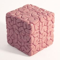 rubick brain cube
