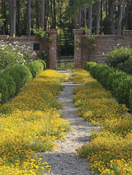 entrance groundcover, landscaping, hedges, brick entryway