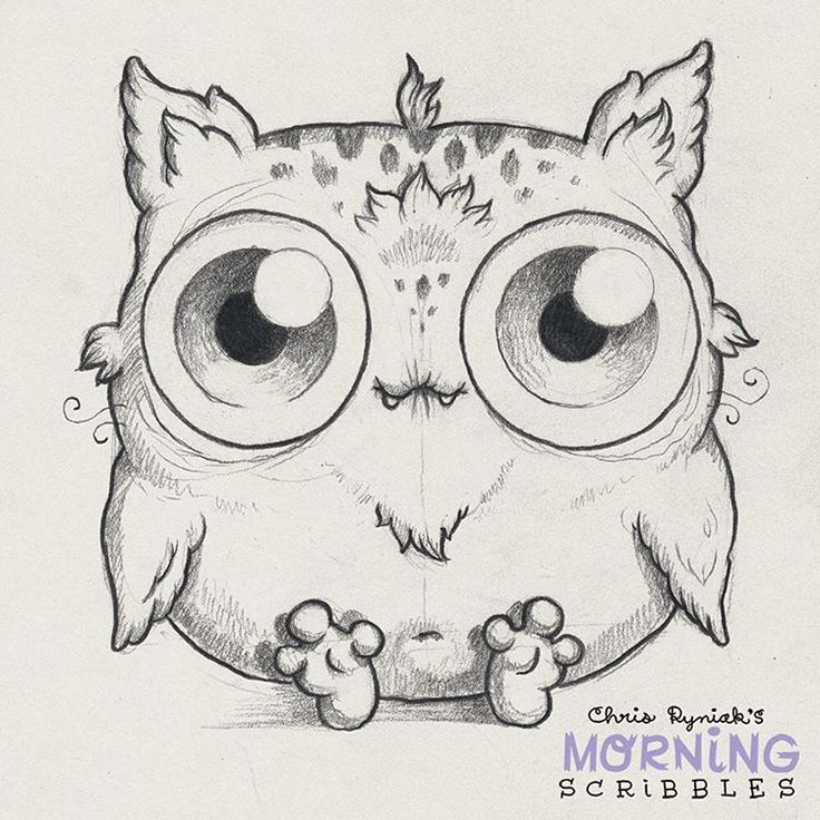 Meowl sees all!  #morningscribbles