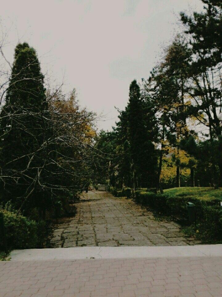 Park in chair city suceava! Location Suceava Suceava Romania