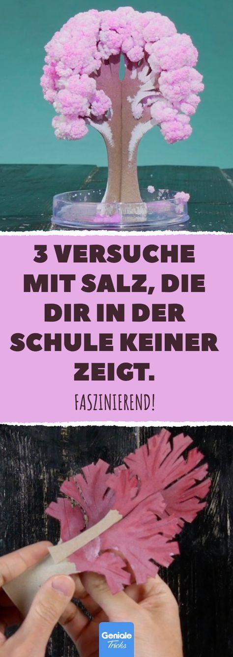 3 Versuche mit Salz, die dir in der Schule keiner zeigt. Faszinierend! #diy #bas…  # DIY Basteln & Selbermachen