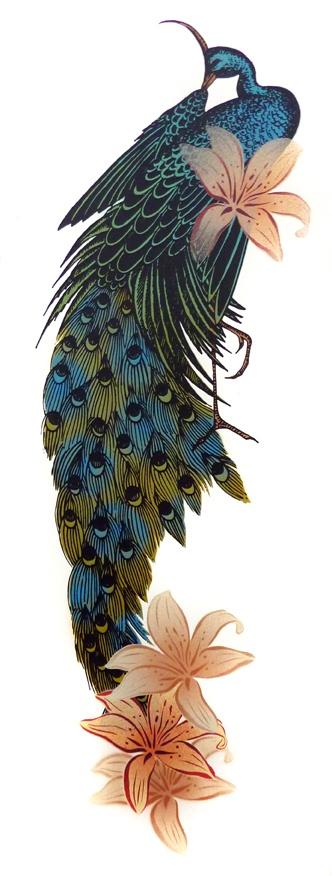 Beautiful peacock by Flox