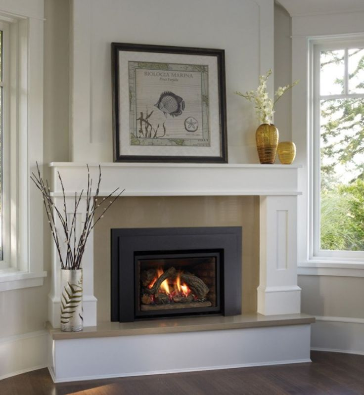Fireplace ~ Gorgeous Gas Fireplace Log Feat Contemporary Flower ...