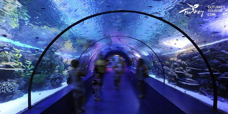Antalya Aquarium in Antalya, Turkey   Go Turkey Tourism - www.goturkeytourism.com