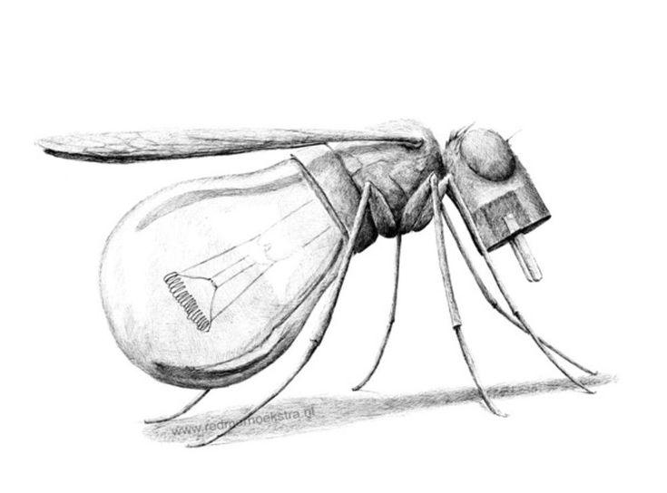Redmer hoekstra s illustre avec ses dessins hybrides More