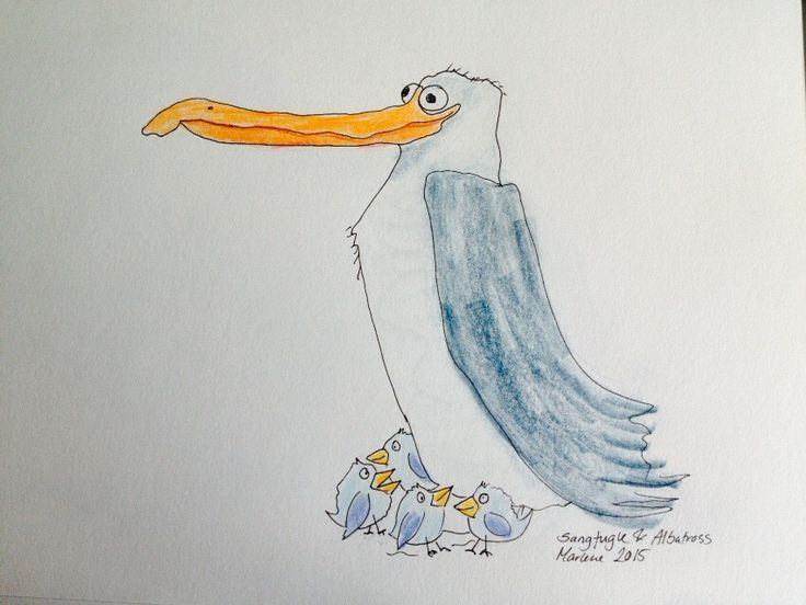 Albatross and songbirds. Colour pencil and micron black pen. #drawing by Marlene Jørgensen