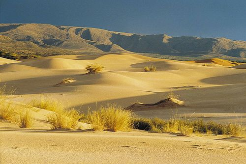 Witsand. Northern Cape. South Africa.