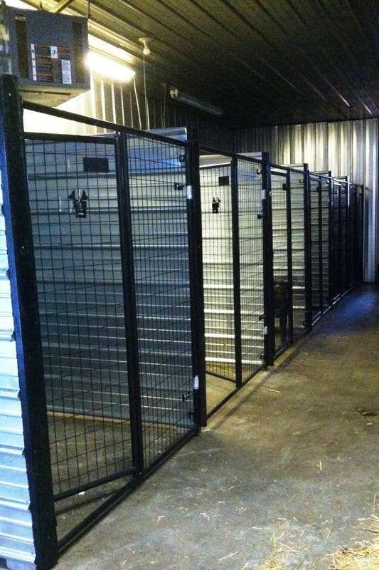 Image result for best dog boarding kennel building