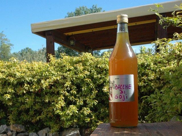 Liquore alle bacche di goji – aggiungere cannella e chiodi di garofano -Vegan blog