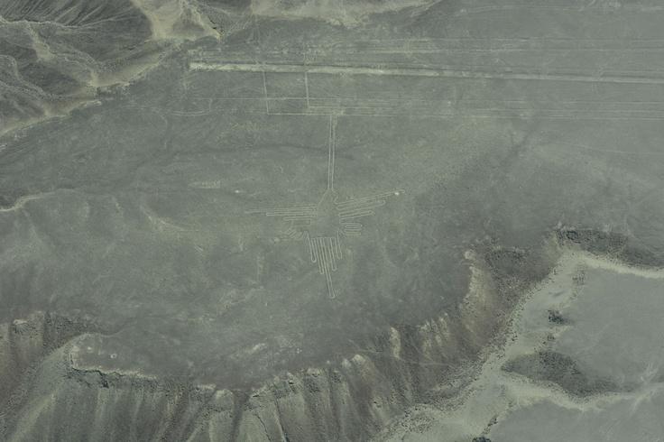 航空機からのナスカの地上絵(ハチドリ)。