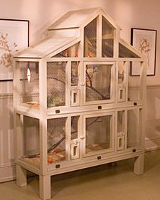 I'm going to order the plans for this cage! It's fabulous! I wish I could find them for free but either way I'm getting them! Canary cage- Martha Stewart