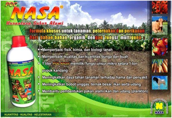 POC Nasa merupakan pupuk organik cair dengan formula khusus dan dibuat dari bahan dasar alami (organik) yang multiguna untuk tanaman, peternakan dan perikanan.  Formula alami (organik) multiguna untuk tanaman juga peternakan dan perikanan.  1 lt POC NASA memiliki fungsi unsur hara mikro setara 1 ton pupuk kandang) sekaligus melarutkan sisa – sisa pupuk kimia dalam tanah sehingga dapat dimanfaatkan tanaman dan menggemburkan tanah.