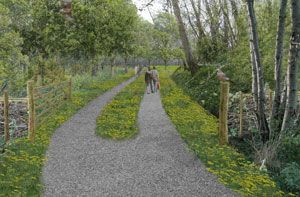 Natural burial site near Heerenveen, impression and landscape design by Vollmer & Partners