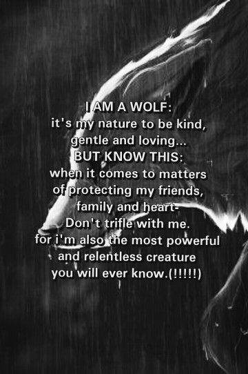 Many wolf hunters think wolves are these wretched, dangerous beasts. They're not. Wolves are usually weary of people and actually fear mankind. When they attack it is to protect themselves or their family. Human mothers don't get killed for wanting to protect they're children. Wolf mothers do.