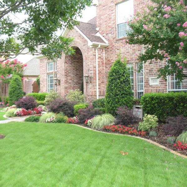 1000 images about foundation plantings on pinterest for Garden design landscaping dallas tx