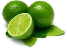 Enjoy a lifetime of Limes! - - Easy to grow - Delicious limes - Low maintenance Grow a lifetime of flavorful limes on your own patio! The Mexican lime, also known as the Key Lime, adds loads of flavor to meat, fish, and cold drinks. Makes a perfect patio plant, anywhere in the country. When grown in a...