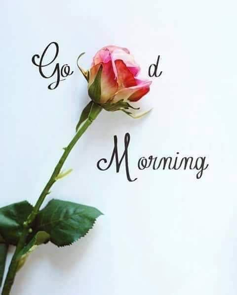Morning or afternoon, evening or night, I will always love you with all my might. Good morning Love. #goodmorningquotesforher