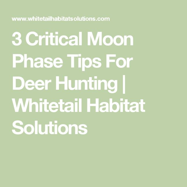 3 Critical Moon Phase Tips For Deer Hunting | Whitetail Habitat Solutions