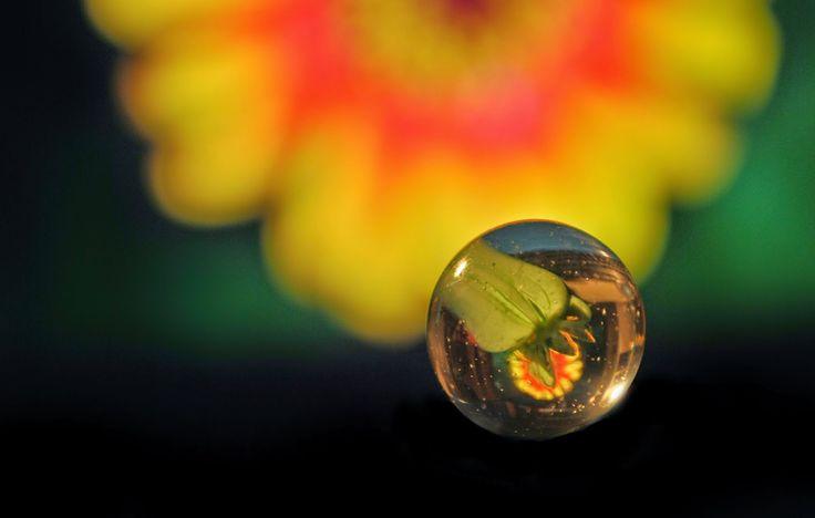 Photography Lab: