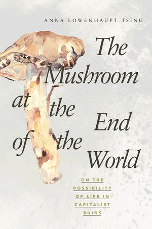A fascinating, complex environmental,  anthropological study of matsutake mushrooms and the assemblages of humans and non-humans that help them thrive (or not!). The account blends ethnography, actor-network theory, history, Asian studies, and science studies.