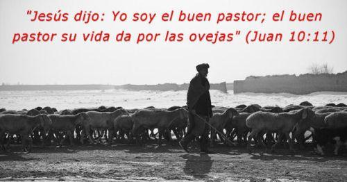 En todo tiempo ha habido impostores religiosos que buscan aprovecharse del rebaño... pero Jesús es el buen Pastor que da su vida por las ovejas. #mensajededios2 #oroporti