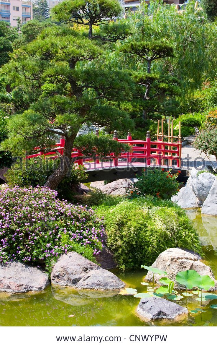 traditional japanese garden with wooden red bridge