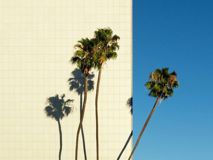 Mathew Scott Photographs