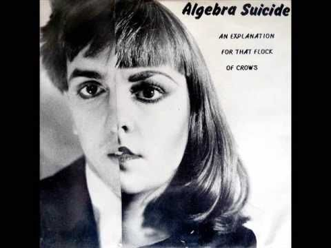 Algebra Suicide, Agitation from 'An Explanation for the Flock of Crows'
