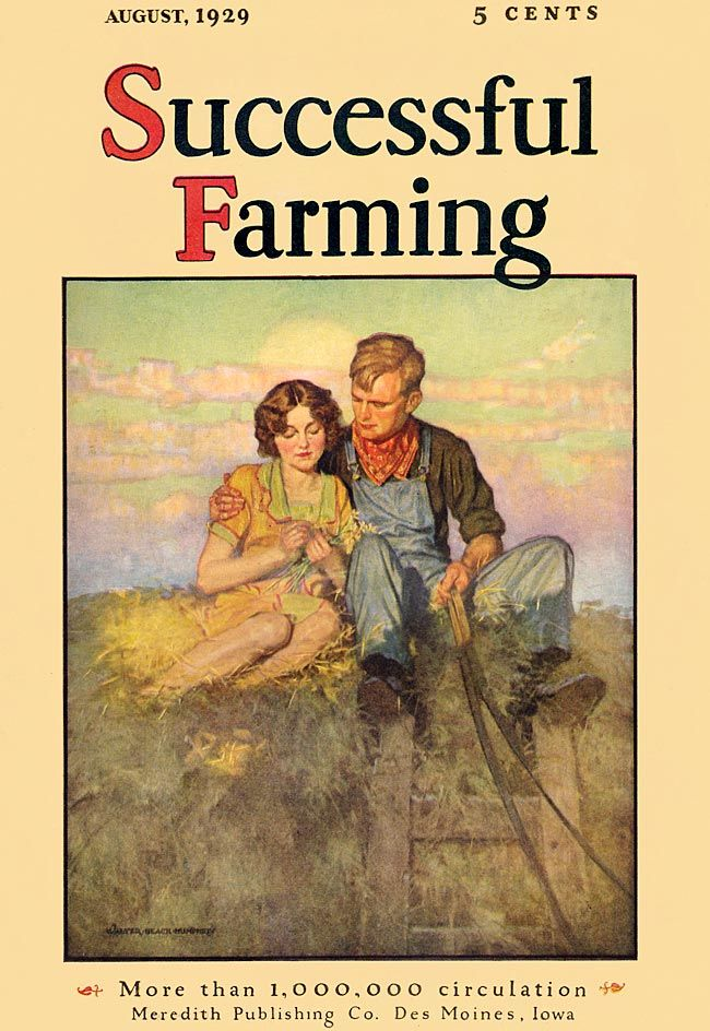 Country Living ~ Art ~ Successful Farming 1929-08