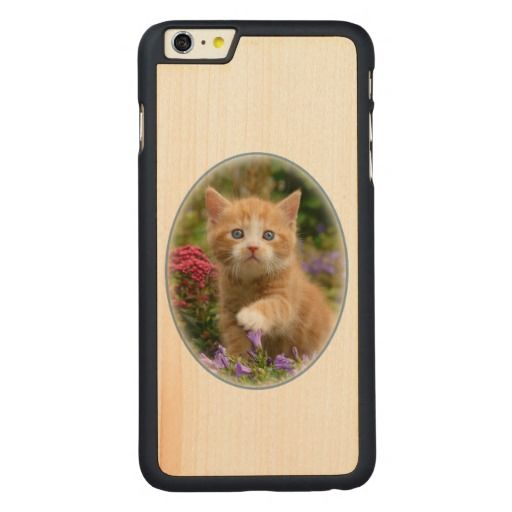 #Cute ginger kitten in a garden carved® maple #iPhone 6 plus #case  photographed by Katho Menden #zazzle