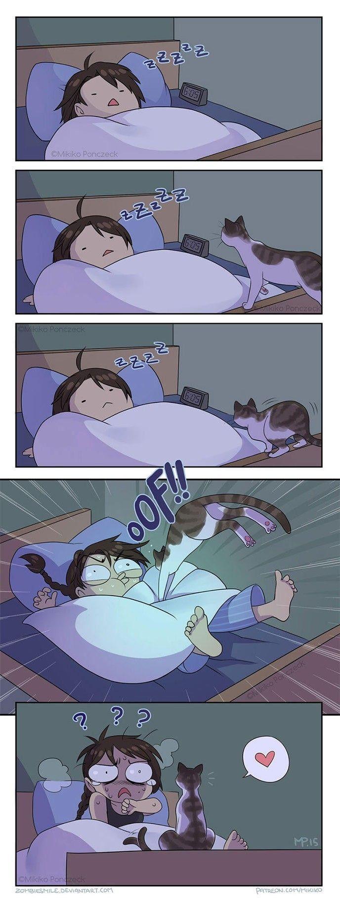 30 mini-BD que seules les personnes qui ont des chats comprendront!