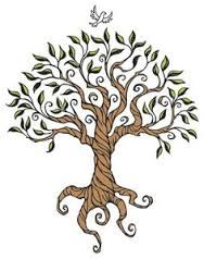Image result for angel oak tree drawing