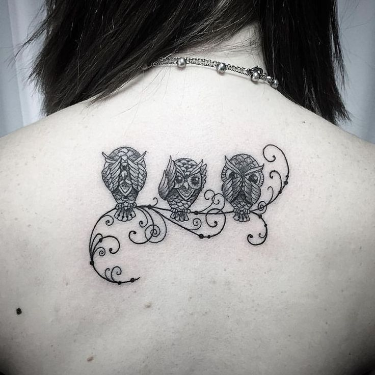 50 of the Most Beautiful Owl Tattoo Designs and Their Meaning for the Nocturnal Animal in You   KickassThings