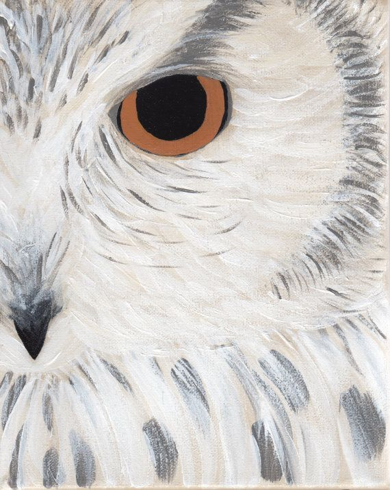 Gray Owl Original Painting by sweetthings3 on Etsy