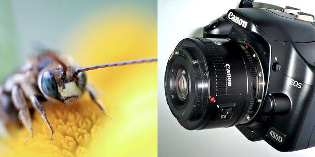 Canon registra patente de lente com montagem invertida