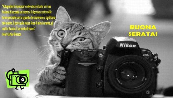 """""""Fotografare è riconoscere nello stesso istante e in una frazione di secondo un evento e il rigoroso assetto delle forme percepite con lo sguardo che esprimono e significano tale evento. E' porre sulla stessa linea di mira la mente, gli occhi e il cuore. E' un modo di vivere."""" Henri-Cartier Bresson. BUONA SERATA!"""