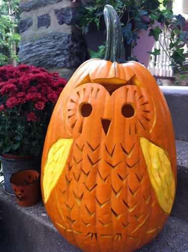 Owl pumpkin, this is cute and different you could make a family by adding small pumpkin owels...