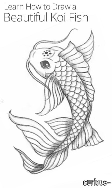 In this lesson, learn how to draw a magical koi fish that is cool enough to be a tattoo.: