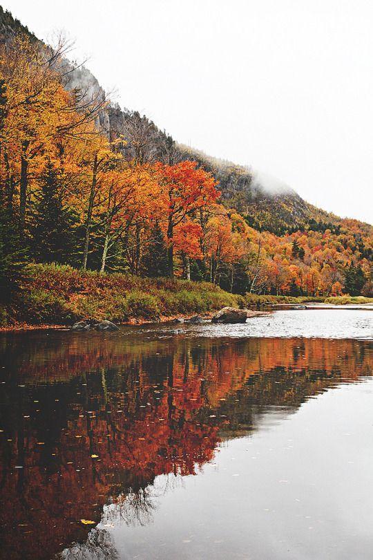 Das ist der Herbstgeist – #das #der #Herbstgeist #…