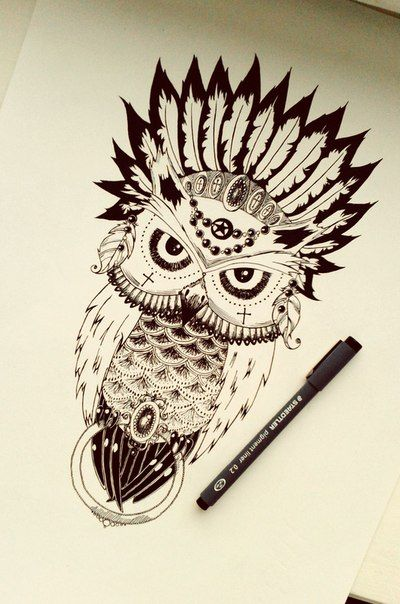 Really beautiful ! Owl scetch