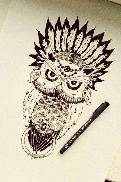 Owl scetch