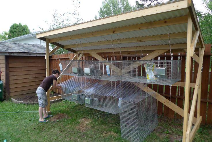 meat rabbits | Backwoods Mama: Raising Meat Rabbits