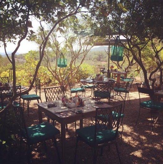 La Paloma restaurant, delicious & organic #ibizarestaurants #organicfood #lapaloma