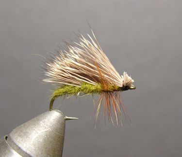 How to tie the Triple Wing Caddis Fly Pattern. I had good luck on the Beaverkill in Roscoe NY last year with an Elk Hair Caddis. This looks like a good variation of the Caddis to try this year. Has anyone else used this fly?
